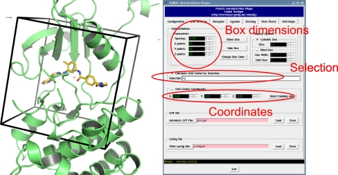 Definition of a docking box around a reference ligand Position size and visualization - Cross-Docking Solutions